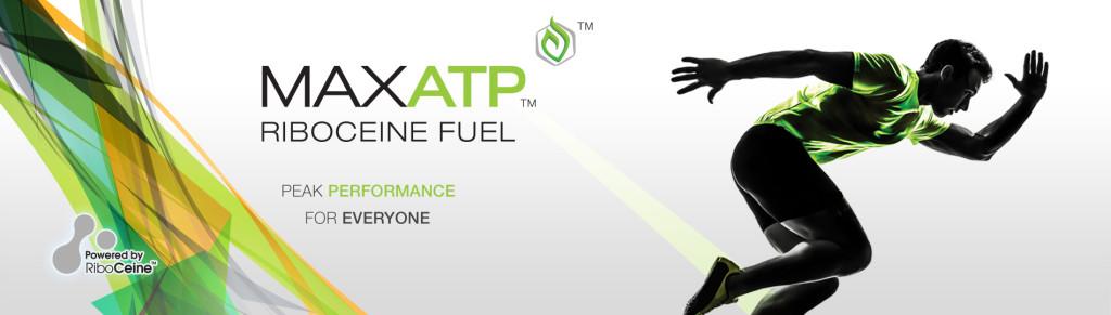 Max ATP Web Banner
